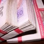 Директор волынского ЗАО нанесла ущерб государству на 3,4 млн. грн.