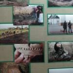 Достижения волынских археологов отражены в фотовыставке «Прошлое на ладонях»